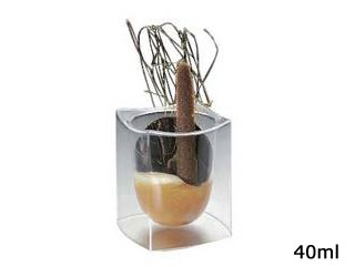 MAUVIEL/テイスティング テイスティング ミニグラス 40ml(144入)MTG40