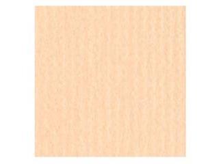 フジイナフキン 【代引不可】パリクロ テーブルクロス シート 1000×1000(100枚入)アイボリー