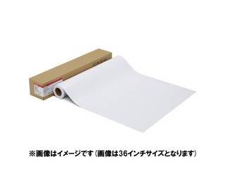 CANON/キヤノン 写真用紙・光沢 プロ[プラチナグレード] LFM-GPPT/17/300 1107C004