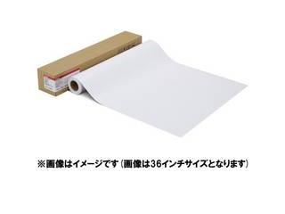 CANON/キヤノン 写真用紙・光沢 プロ[プラチナグレード] LFM-GPPT/24/300 1107C003