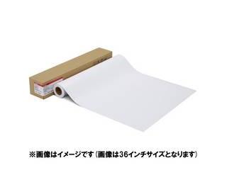 CANON/キヤノン 写真用紙 微粒面光沢 ラスター LFM-SGLU/24/260 1108C003