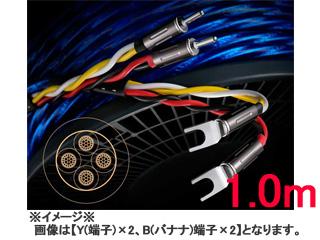 6N 4種新ハイブリッド シールド付4芯特太バイワイヤー対応スピーカーケーブル 受注生産の為 キャンセル不可 Zonotone Bx4 お得クーポン発行中 7700α 日本限定 Yx2 6NSP-Granster 1.0mx2 ゾノトーン