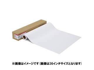 CANON/キヤノン 写真用紙・プレミアムマット LFM-CPPM/42/210 1109C001
