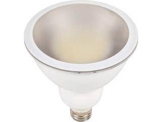 NICHIDO/日動工業 LED交換球 ハイスペックエコビック14W E26 電球色 本体白 L14W-E26-W-30K-N