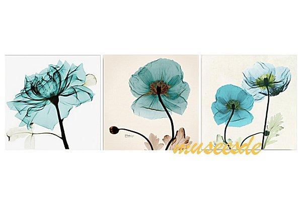 モダン アート 壁掛け印刷 ポスター フォトパネルインテリア 透明な花 アートパネルSteven N.Meyers レントゲン X線(X-Ray) 3枚セット PX1B033