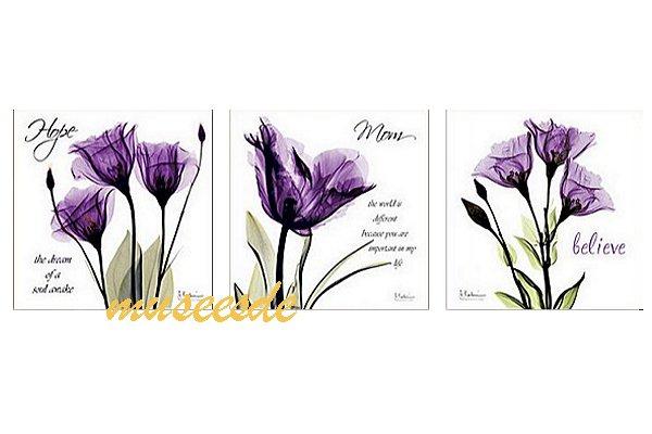 【ミュゼ・デユ】手軽く、取付簡単おしゃれな壁掛けアートプレゼント・贈答品・ギフトにも人気 モダン アート 壁掛け印刷 ポスター フォトパネルインテリア 透明な花 アートパネルX線 (X-Ray) 3枚セット PX1B031