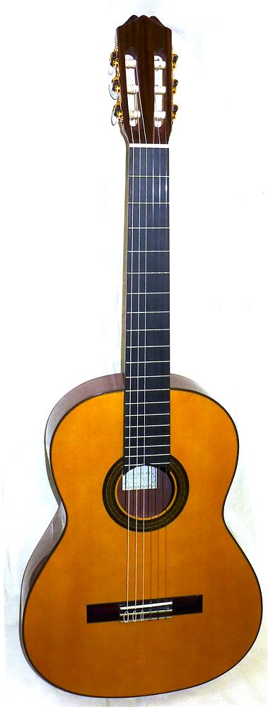 Aria ACE-5S アリア クラシックギター セミハードケース LFC-120付き