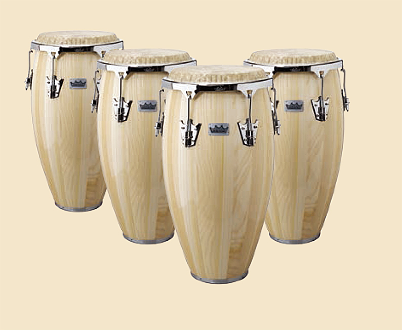 REMO Crown Percussion Congas:LREMCRP01800 12.5