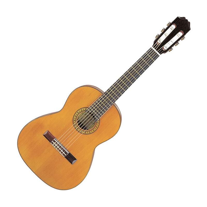 Aria PS-53 PEPE (Mini) アリア クラシックギター