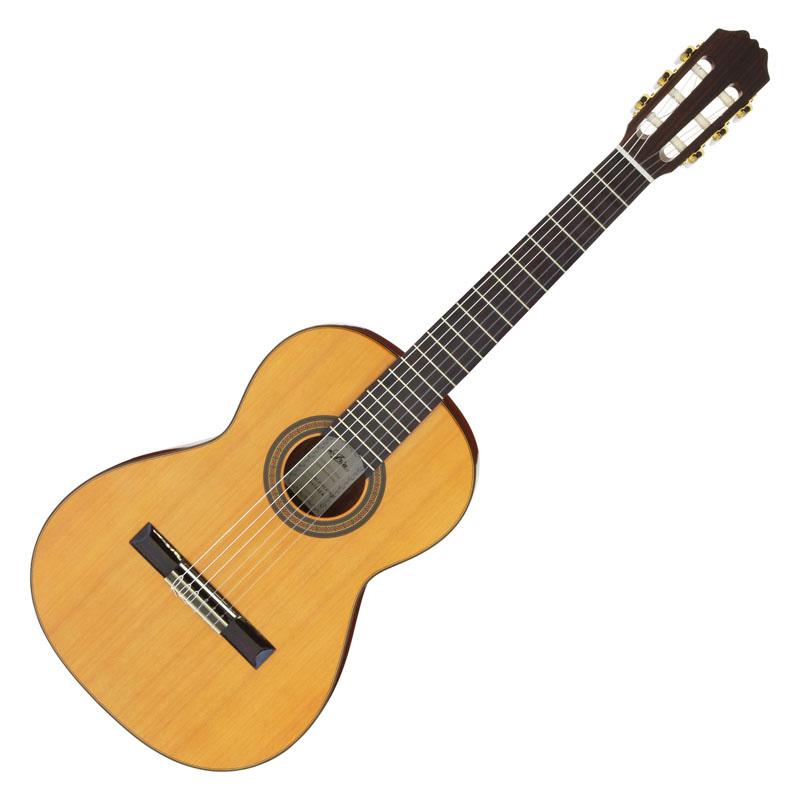 Aria ACE-5C 610 Concert アリア クラシックギターギグケース付き