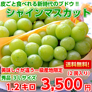 Grape skin and eat! Yamanashi and Nagano Prefecture industrial chain mascot, 3 L size 1.2 kg (with 2 bunches)