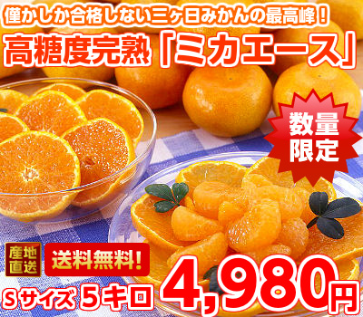"Maximum of 3 months, luxury brand ultra high Brix mature 3 months, Mikan ""Michaels' S size with 5 kg (Hokkaido, Okinawa, some islands are 300 yen)"