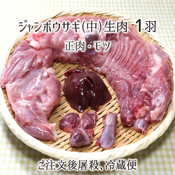 ジャンボウサギ 中 1羽 生肉(正肉 約1.3kg・もつ 約90g) 秋田県大仙市産 むね/もも/うで/はら/ハツ/レバー/タン/腎臓 国産 兎 ラパン 送料無料