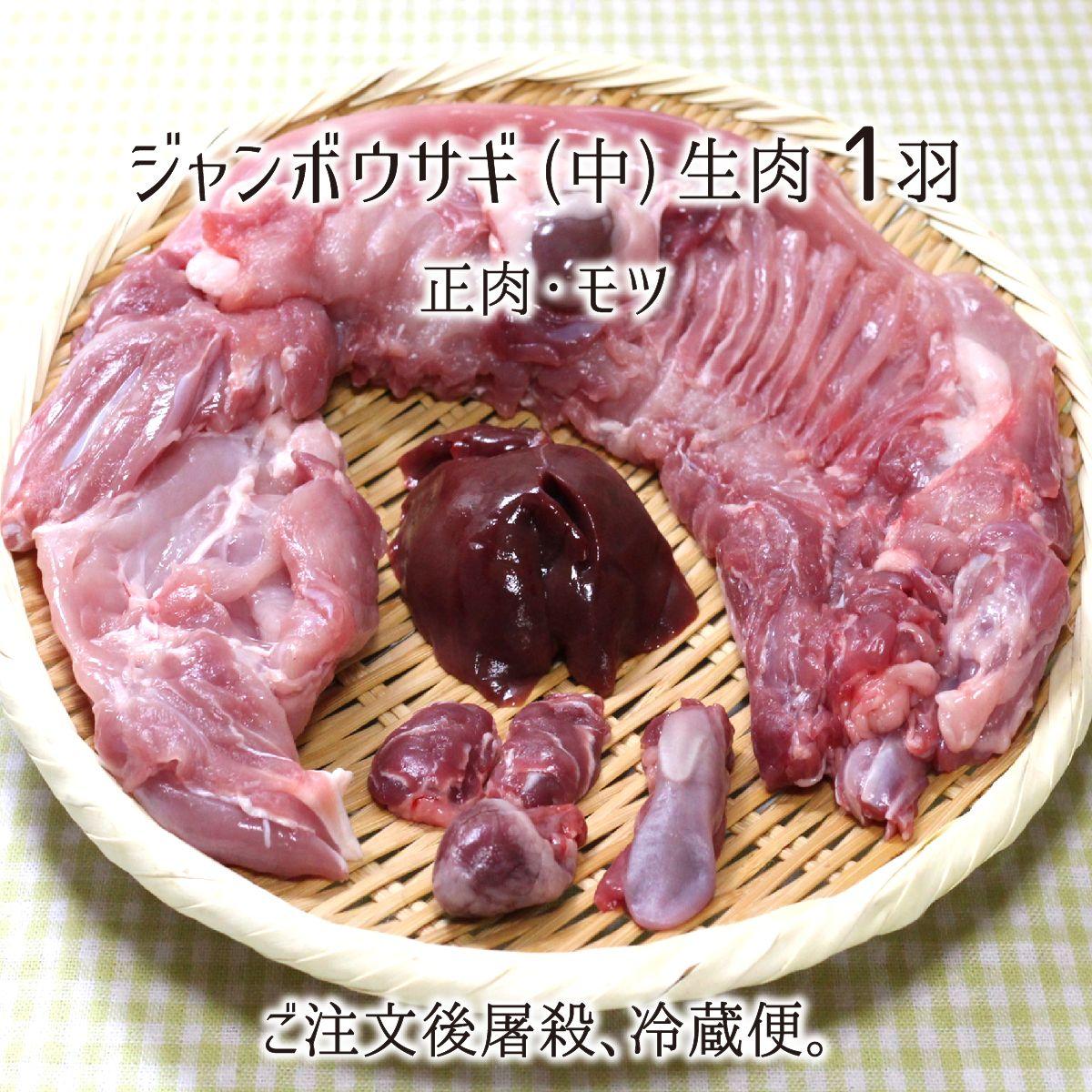 ご注文後に捕獲し屠殺解体、冷凍挟まないウサギ生肉。 ジャンボウサギ 中型 1羽 生肉(正肉 約1.3kg・もつ 約80g) 秋田県大仙市産 むね/もも/うで/はら/ハツ/レバー/タン/腎臓 国産 兎 ラパン 送料無料