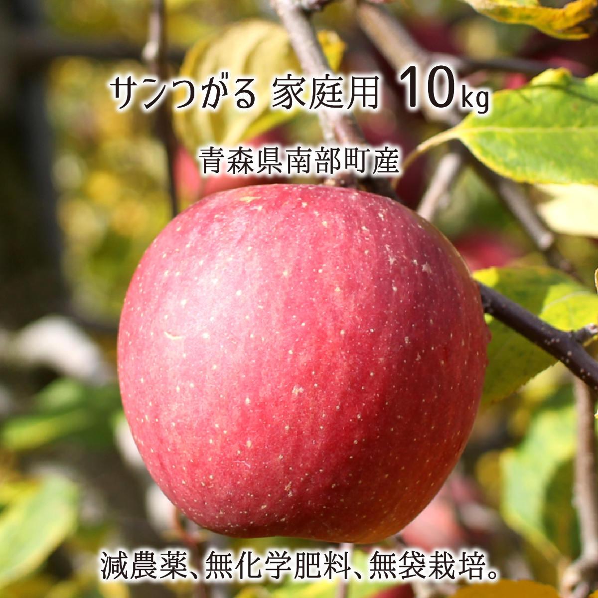 国内在庫 無料 減農薬 有機肥料栽培 果皮まで食して欲しい無袋栽培りんご サンつがる 訳あり 10kg 無化学肥料 26~40玉 家庭用 青森県南部町産 送料無料 9月下旬~10月上旬 りんご