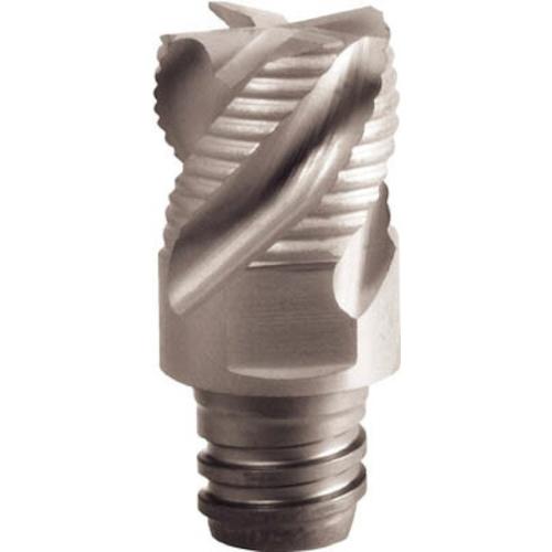 イスカル C マルチマスター交換用ヘッド4枚刃 COAT 2個 MM ERS100B07-4T06 IC908
