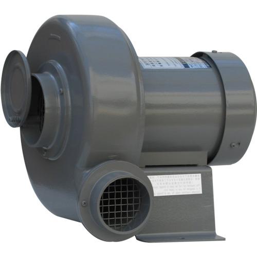 淀川電機 プレート型電動送排風機 全閉外扇型 0.2kW N4