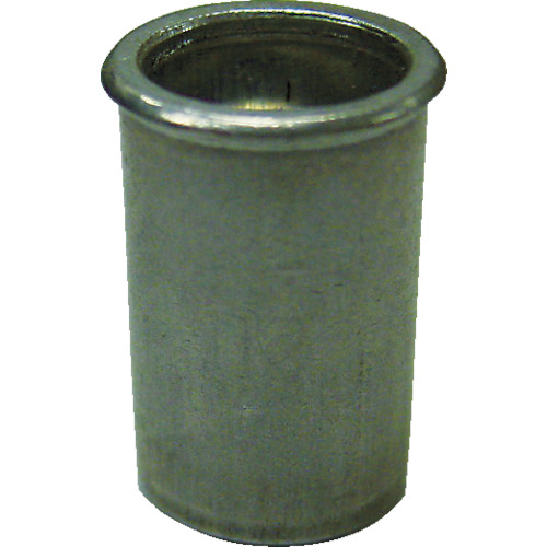 ロブテックス(エビ) エビナット 薄頭 スティール M5板厚1.5~2.5 1000本入 NSK525M