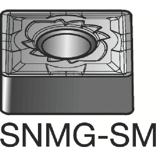 SANDVIK(サンドビック) T-Max P 旋削用ネガ 16-SM・チップ 10個 SNMG SNMG 15 15 06 16-SM, 天然まぐろの焼津屋:2074c765 --- guiabrasildehoteis.tur.br