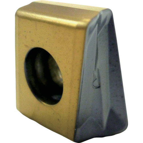 イスカル C チップ COAT 10個 T490LNMT1306PNTR IC5400