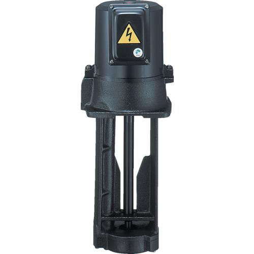 テラル クーラントポンプ 浸水型 75/100L/min 全揚程3.0m VKP-075A