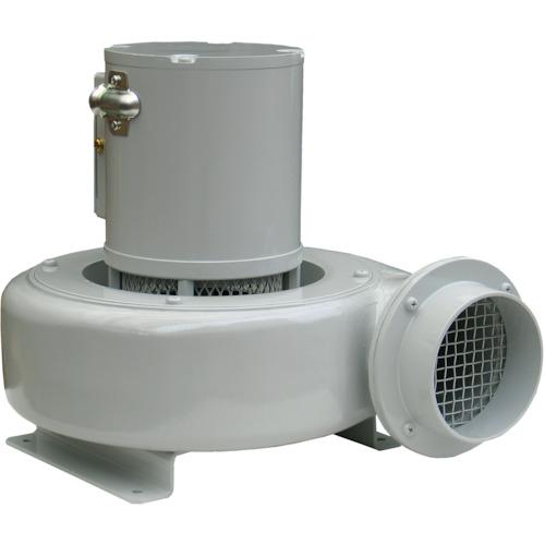淀川電機 逆吸い込み型電動送排風機 0.125kW Z2.5