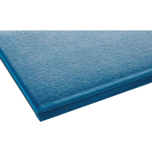 【直送】【代引不可】テラモト テラクッション極厚 900×1500 ブルー MR-069-044-3