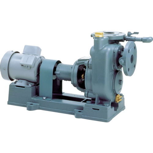 【直送】【代引不可】TERAL(テラル) 自吸式渦巻きポンプ 三相200 1台 SPL3-125-E-3-200-60HZ