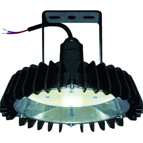 日立工機(HITACHI) 高天井用LEDランプ アームタイプ 特殊環境対応 防湿・防雨形(対衝撃形) 1台 WCBME16AMNC1