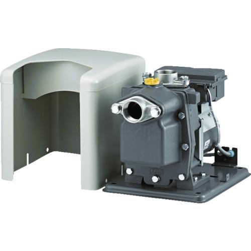 【限定品】 B-P100X6:工具屋のプロ 店 日立(HITACHI) 非自動ビルジポンプ-DIY・工具
