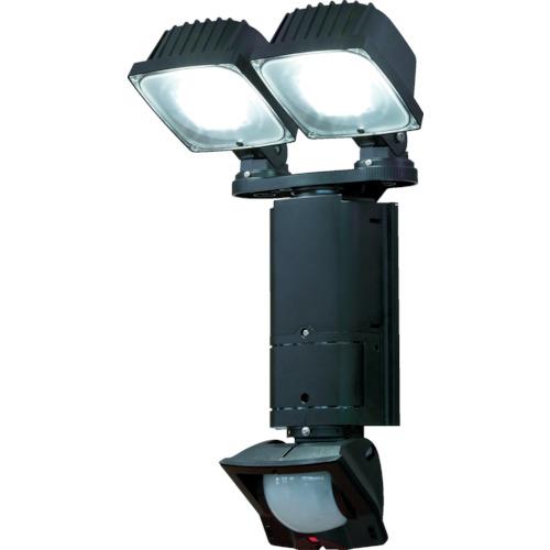 デルカテック(DXアンテナ) LEDセンサーライト DSLD200A2