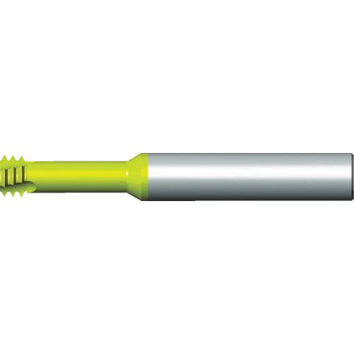 NOGA(ノガ) 超硬ソリッドハードカット M2.0X0.4 H06016C4 0.4ISO
