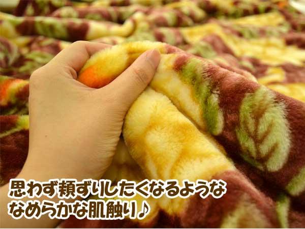 Nishikawa ファータイプ 2 piece suit Meyer blanket single size 140 x 200 cm