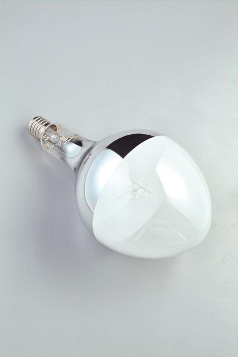 ハタヤ BHRF-750W バラストレス水銀ランプ電球(750W)