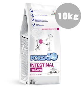 FORZA10 インテスティナルアクティブ 胃/腸の健康維持食事療法食 中粒 10kg【99】【取り寄せ3日~10日】