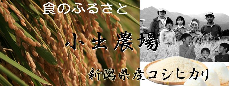 こしひかりの郷 小出農場:食のふるさと 小出農場 新潟産こしひかり