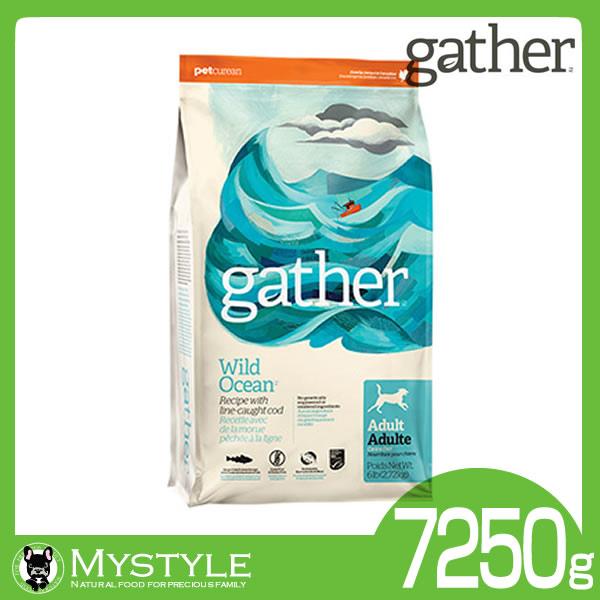 gather ギャザー ワイルドオーシャン 7.25kg【送料無料】犬用 フード 穀物不使用 グルテンフリー(ドッグフード ペットフード 犬用品 ドライフード)