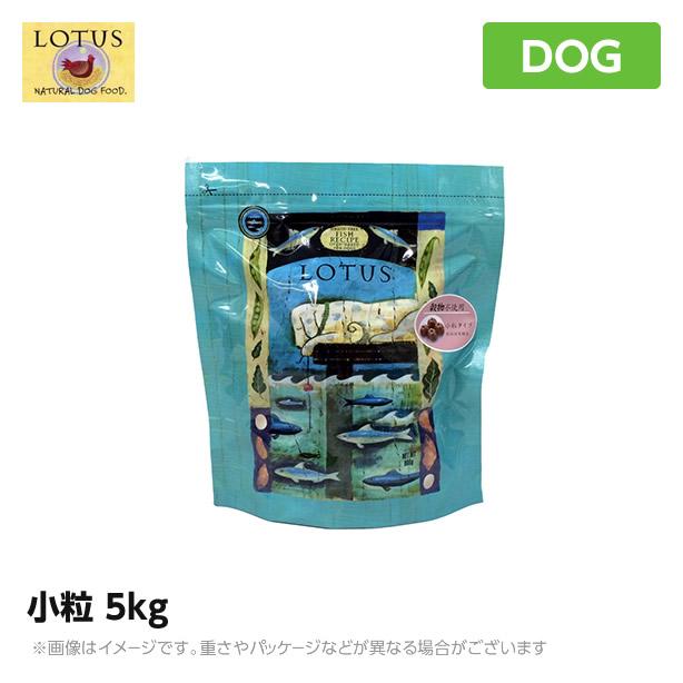 ロータス グレインフリー フィッシュレシピ 小粒 5kg《穀物不使用 低アレルギードッグフード》【グレインフリー】【送料無料】(犬用品 ペットフード ドライフード)