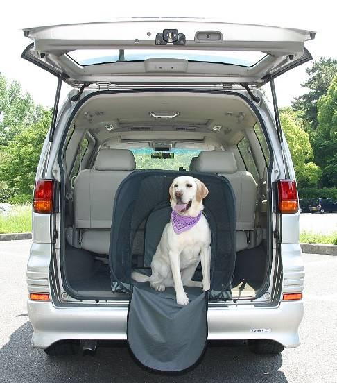 わけあり特価 パッケージ汚れ 折りたたみ出来るワンちゃんのお部屋犬別荘 Mサイズ 犬小屋 日本最大級の品揃え ワンヴィラ 至上
