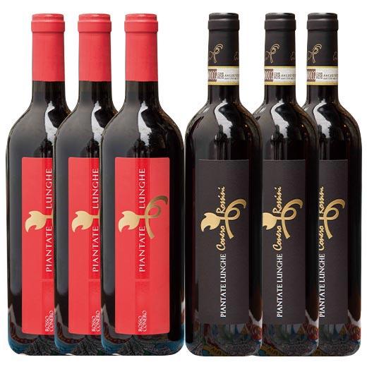 【送料無料】マルケ濃厚赤ワイン 2種6本セット [赤ワイン] [ワインセット]【7781248】