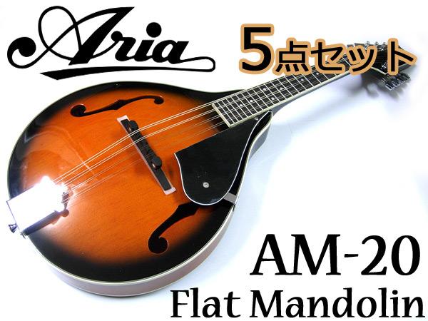 【嬉しい5点セット!】Aria/アリア AM-20 ベーシックモデル フラットマンドリン カントリーミュージックやブルーグラスに!【P5】