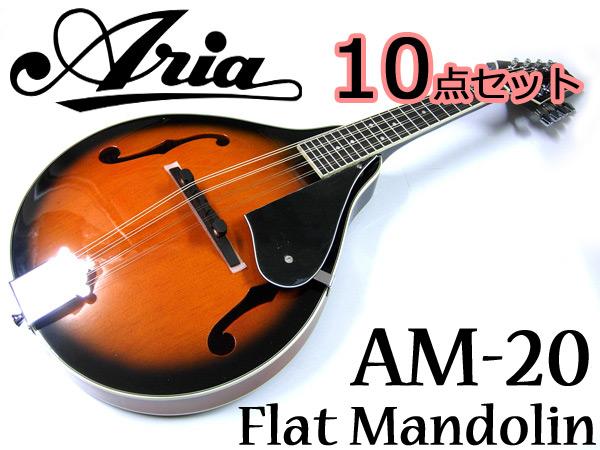 【超お得な10点セット!】Aria/アリア AM-20 ベーシックモデル フラットマンドリン カントリーミュージックやブルーグラスに!【RCP】【P5】