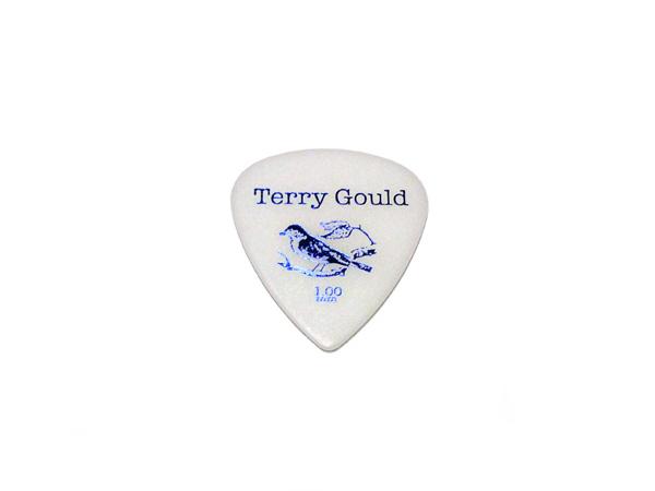 期間限定 メール便発送商品 PICK BOY ピックボーイ 開店記念セール GP-TG-T 100 24枚セット 厚み:1.00mm スタンダード ピック P5 ティアドロップ Gould Terry テリーゴールド