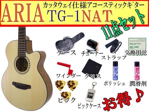 【満足な11点セット】ARIA/アリア TG-1/TG1 N/ナチュラル 小ぶりなアコースティックギター【P2】