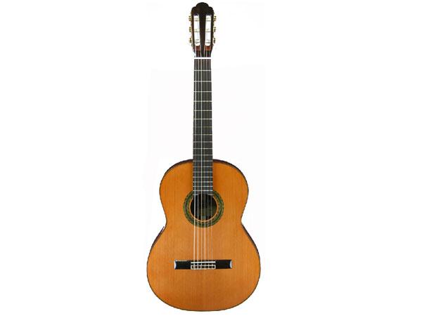 ARIA/アリア A-100C A-100C ソフトケース付 セダー単板 クラシックギター セダー単板【P5】, モノコト(インテリア雑貨):43c66ba5 --- sunward.msk.ru