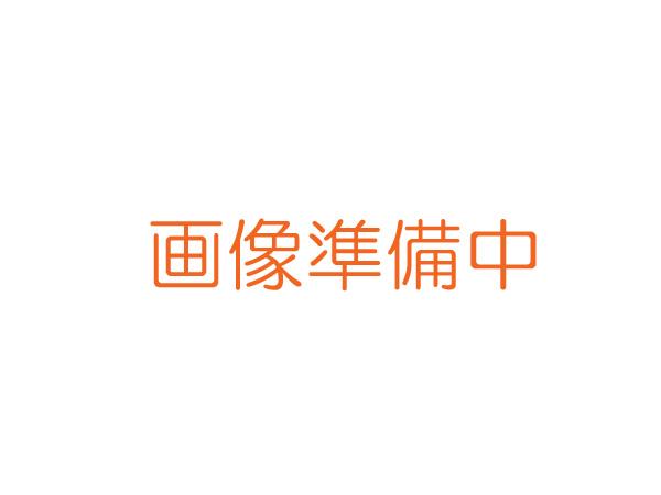【メール便発送商品】SUZUKI/スズキ RP-200(MR-200用) HiG調 交換用リードプレート 鈴木楽器製作所【RCP】