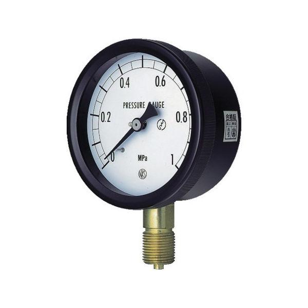 【全品P5倍~10倍】密閉形圧力計 長野 BC101310.16MP-5151