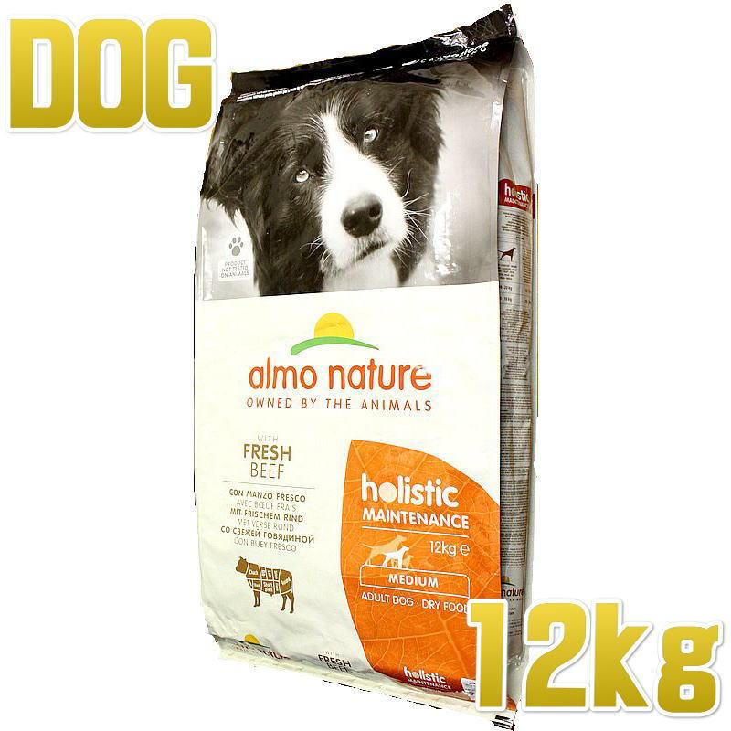 販売 最短賞味2022.4 アルモネイチャー 犬 ビーフ 中粒 12kg大袋 正規品 nature 本店 ドライ ドッグ almo ald746ホリスティック