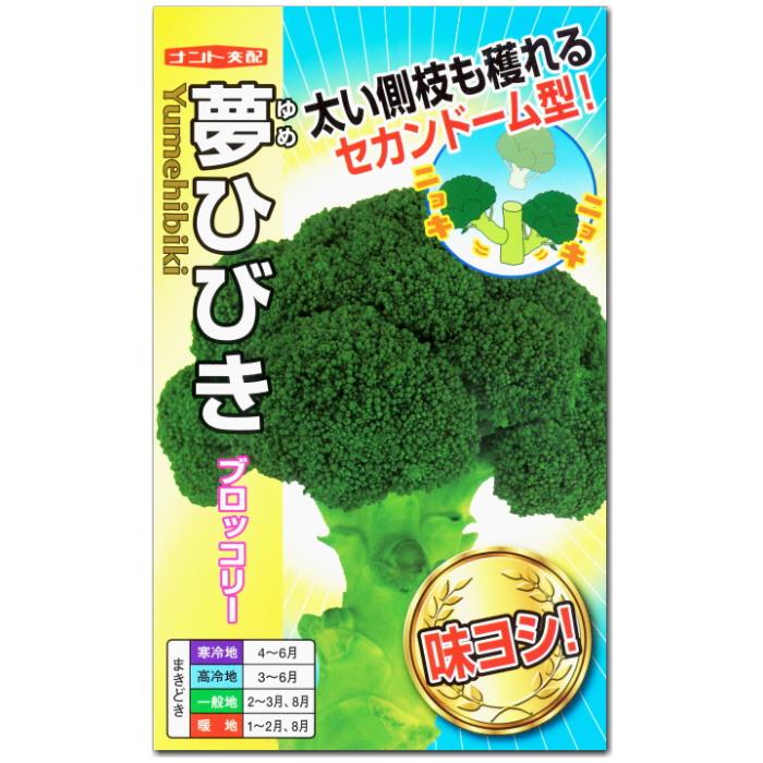 ブロッコリー 種子 夢ひびき 20ml 【ラッキーシール対応】