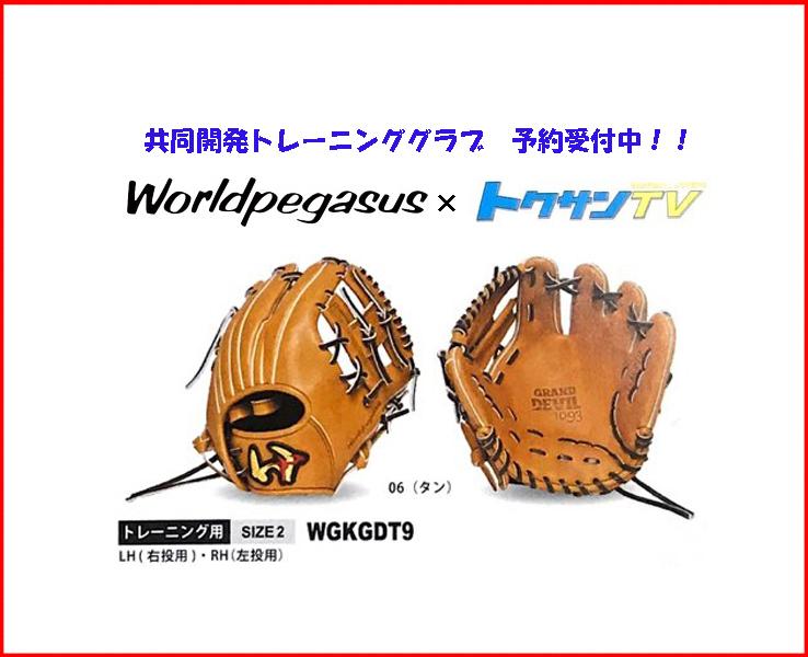 ワールドペガサス トクサンTVコラボ トレーニンググラブ 共同開発 WGKGDT9(06.タン) 右投げ サイズ:2 内野手 試合でも使えます。
